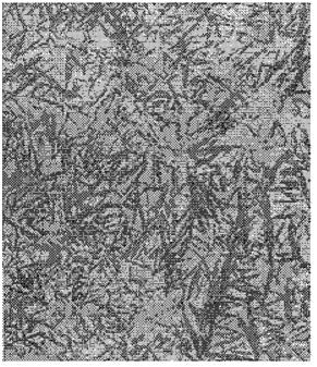 Типичная структура мартенсита высокоуглеродистой стали